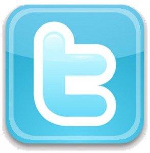 Des discussions en court pour le déblocage de Twitter en Russie dans Réseaux sociaux twitter-294x300